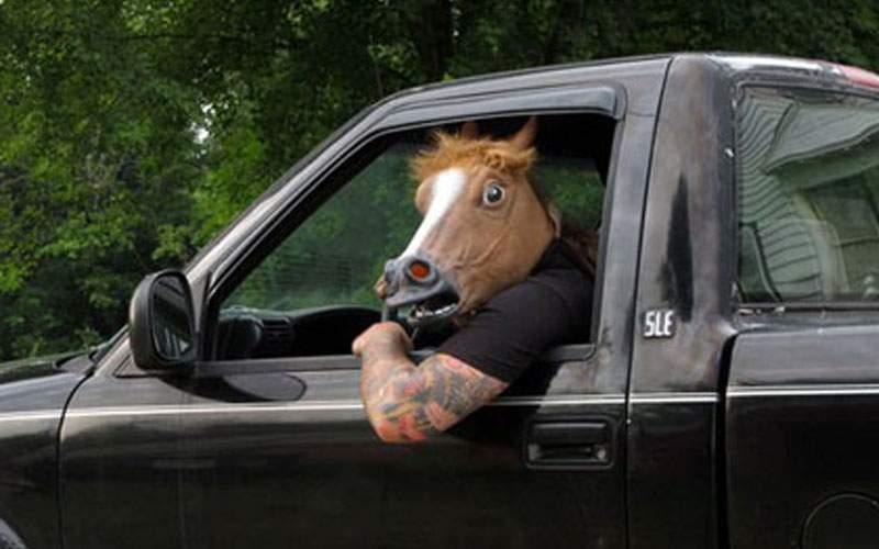 Accident grav în Strehaia. Un cal beat a lovit cu BMW-ul un cal pe trecerea de cai