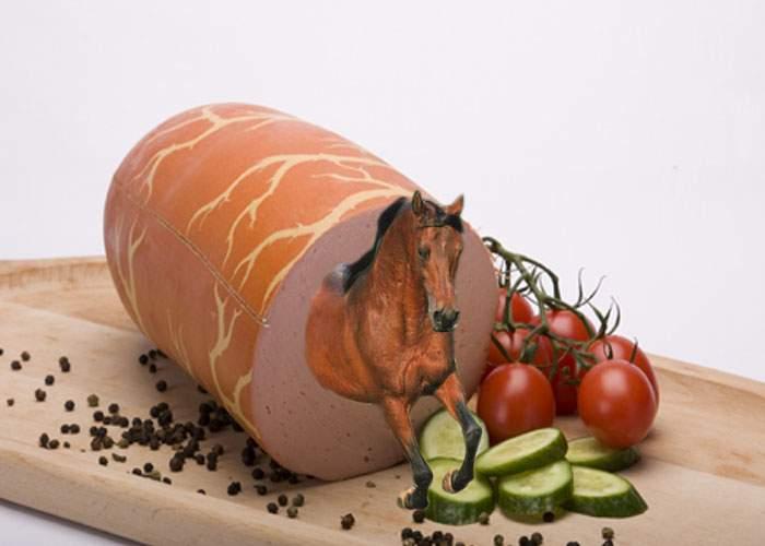 Inspectorii OPC au găsit un cal viu într-un parizer