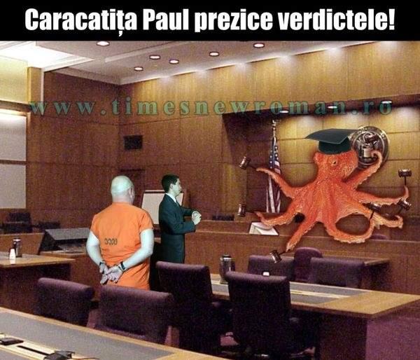 Singura soluţie pentru scurtarea proceselor: Caracatiţa Paul vine să ne judece