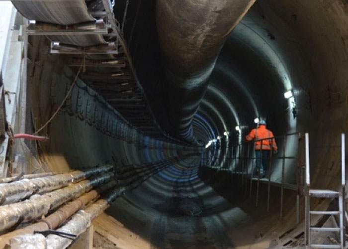 Metrou Drumul Taberei: cârtiţa Filofteia a ieşit la suprafaţă, dar a văzut că e Firea primar şi s-a băgat la loc