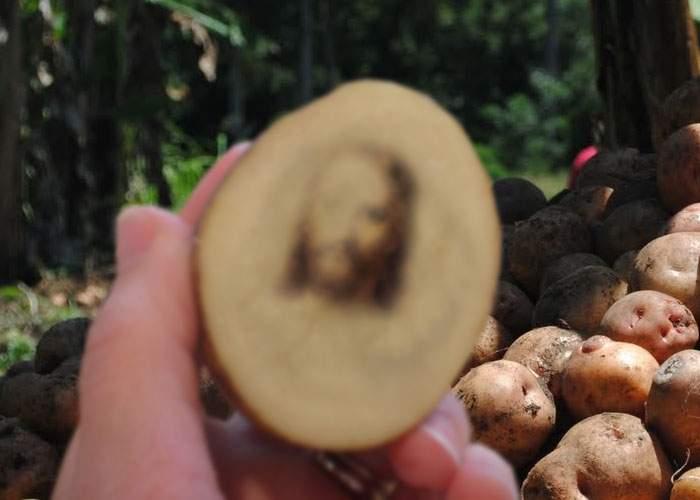 Un ţăran a devenit miliardar după ce a cultivat un lan întreg de cartofi cu chipul lui Iisus