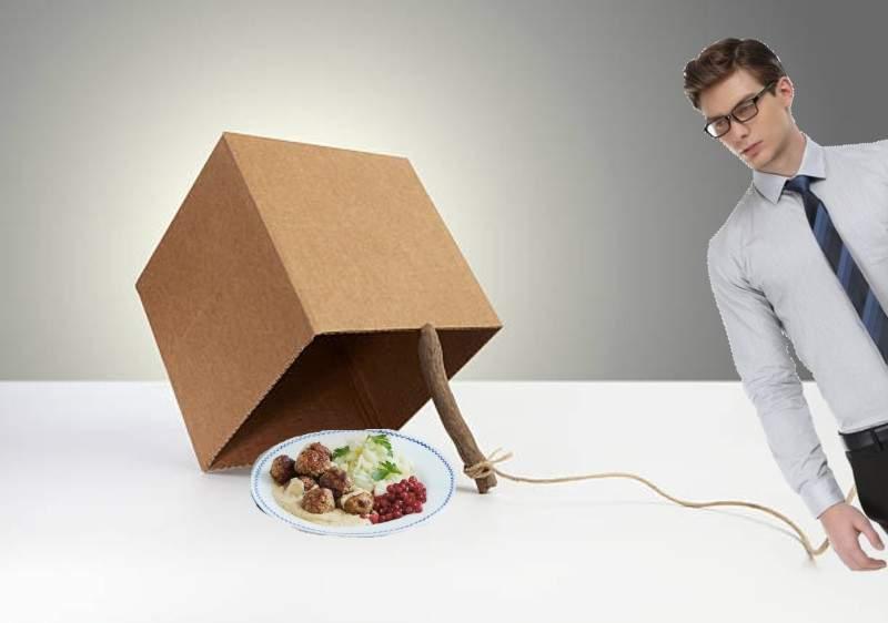 Un român a pus o chiftea Ikea sub o cutie de carton şi a prins un corporatist!