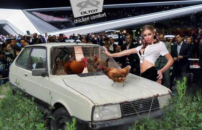 Excepție! E permis să ieși să hrănești găinile din Olcit, că e activitate agricolă
