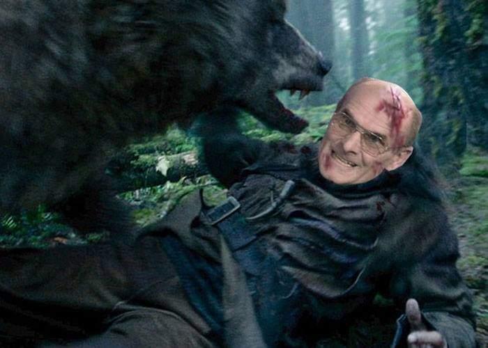 """După ce-a criticat filmul """"The Revenant"""", CTP a fost atacat de un urs lângă Brașov"""