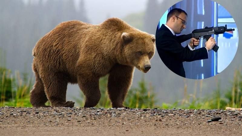 Cumpănaşu, sodomizat de un urs, după ce a încercat să-l vâneze cu arma de airsoft