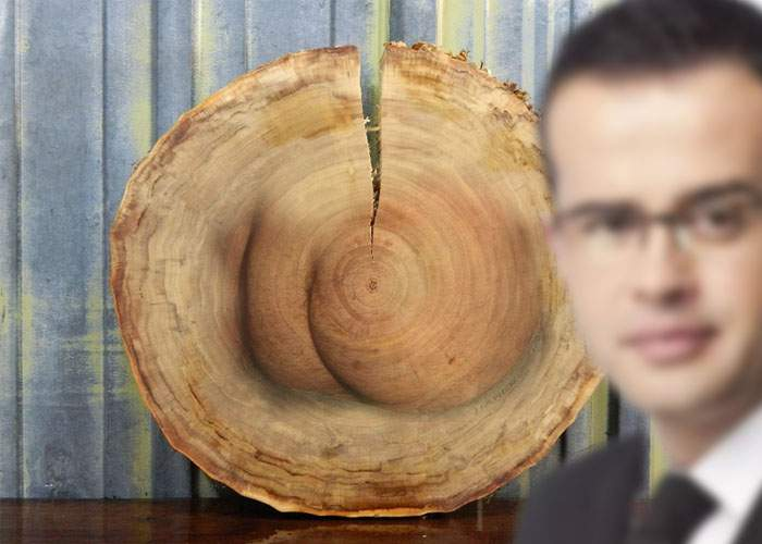 Miracol în Băneasa! Fesele lui Voiculescu au apărut într-un trunchi de copac!