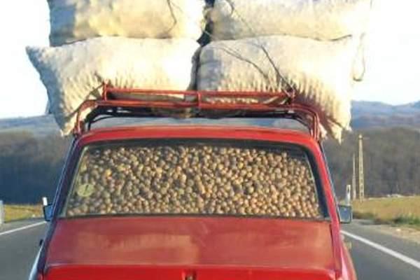Record! Un român şi-a încărcat Dacia 1310 cu 400 de tone de cartofi, porci şi baloţi de fân