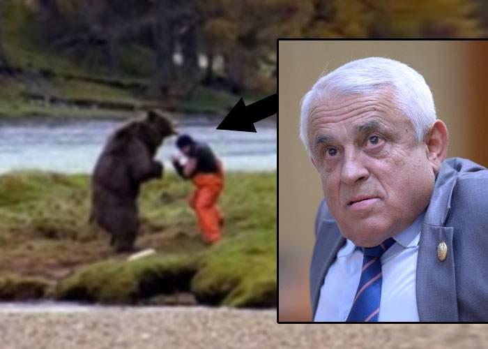 Dragostea învinge! Petre Daea a sugrumat cu mâinile goale un urs care a atacat o oaie