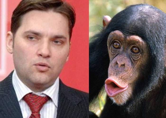 O femelă cimpanzeu îl revendică pe Dan Şova, acuzând că i-a fost furat la naştere