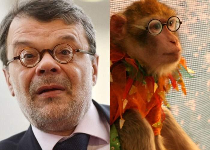 Maimuţica Jimmy în pericol? Daniel Barbu îşi va relua vechiul loc de muncă, de la circul Globus