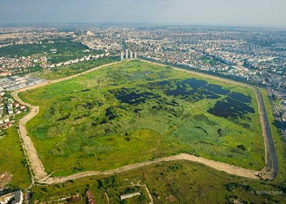 Descoperă România! 13 lucruri despre Delta Văcăreşti