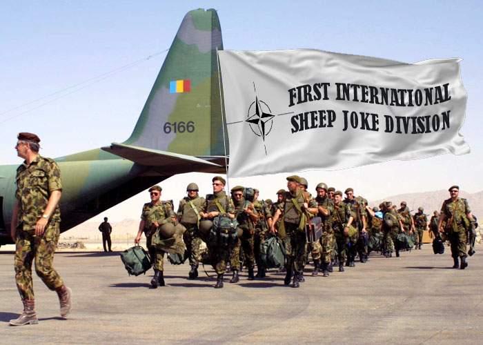 După succesul militar de ieri, România preia conducerea Diviziei de Glume cu Oi din cadrul NATO