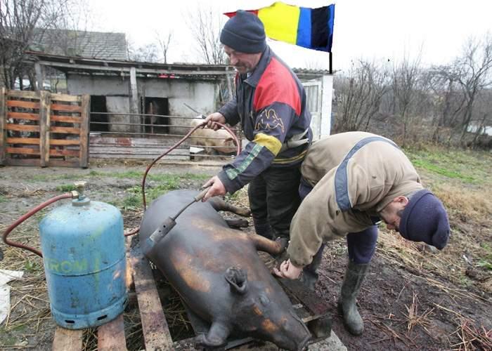 Pentru că nu ştiau ce să facă de doliul naţional, mulţi români au tăiat porcul