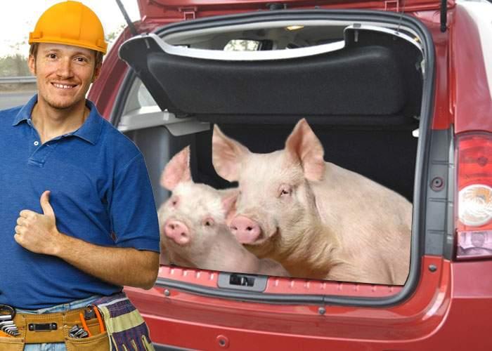 Noul Duster, 5 stele la testul NCAP: 'Ncap doi porci în portbagaj!