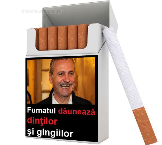 fumatavert03.jpg