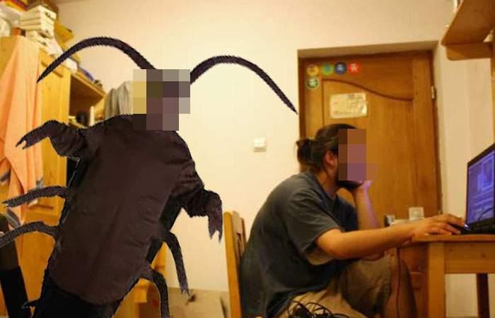 Deziluzie! Un student a crezut timp de 3 ani că are un coleg de cameră, dar era doar un gândac uriaş