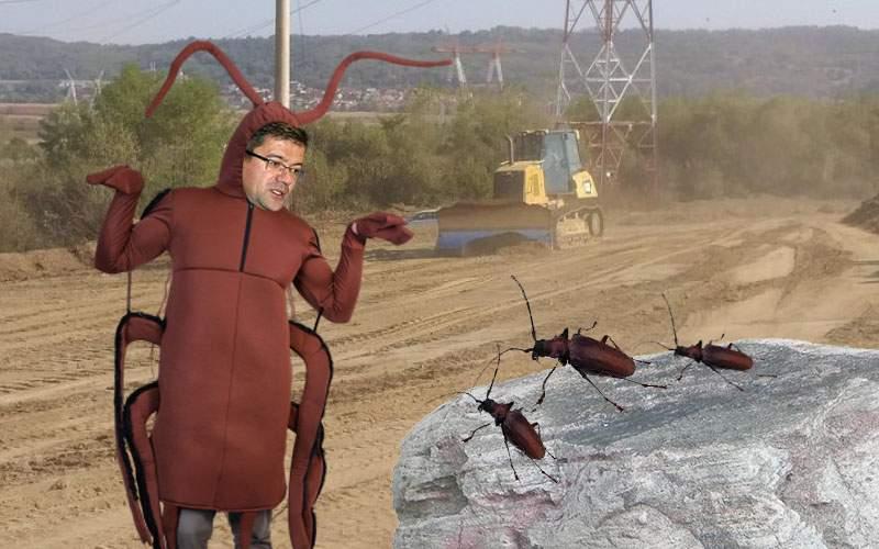 Ministrul Mediului va negocia, costumat în gândac, cu gândacii care blochează autostrada Sibiu