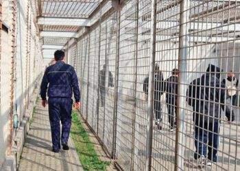 Gardienii închisorilor iau notiţe de la vameşii aflaţi în arest
