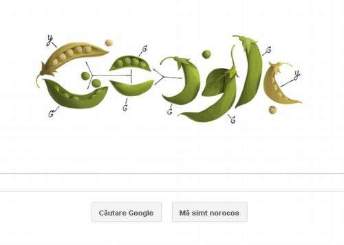 Google îl sărbătoreşte azi pe Radu Mazăre