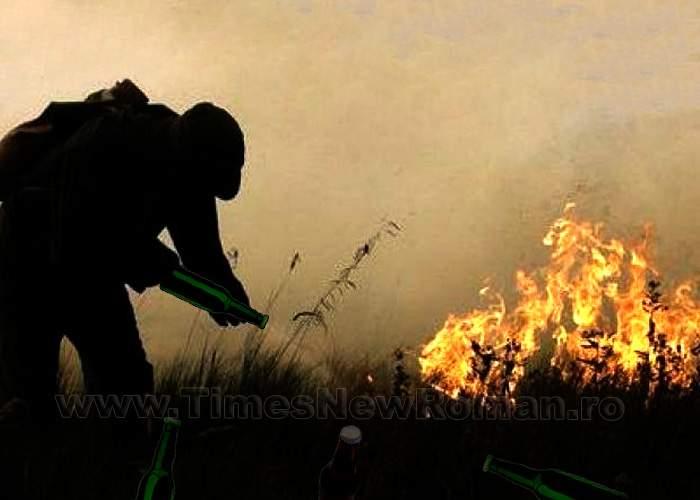 Incendiile din județul Tulcea au izbucnit de la un pahar de țuică tare