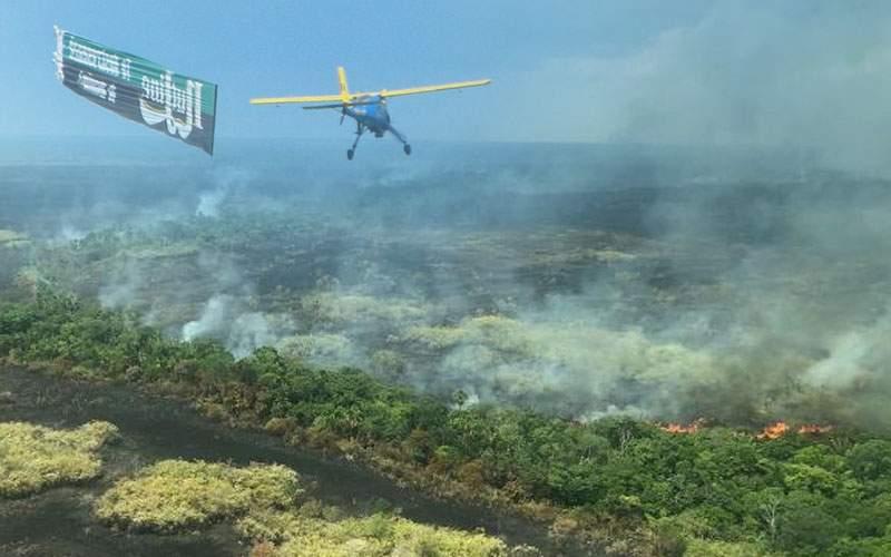 10 lucruri despre incendiile din Amazon