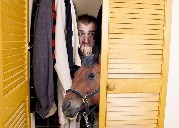 Miting PSD la Craiova. De frica hoţilor, interlopii din oraş s-au baricadat în case, cu tot cu cai