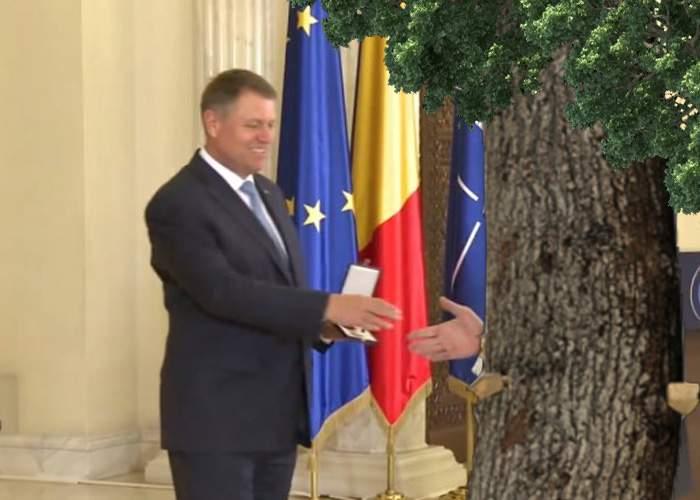 Klaus Iohannis, pas spre normalitate. A decorat copacul în care a intrat patronul Hexi cu maşina