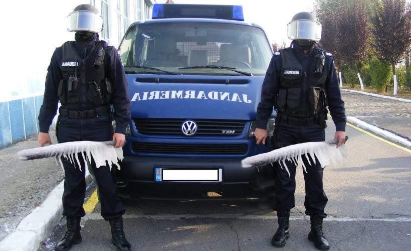 Pregătiri intense! Jandarmii îşi ţin pulanele la congelator, să fie tari pe 10 august