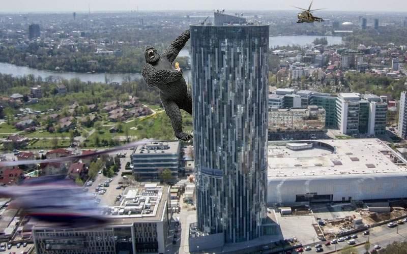 Alertă! O gorilă de 30 de metri a evadat de la Nuţu Cămătaru şi s-a căţărat pe Sky Tower