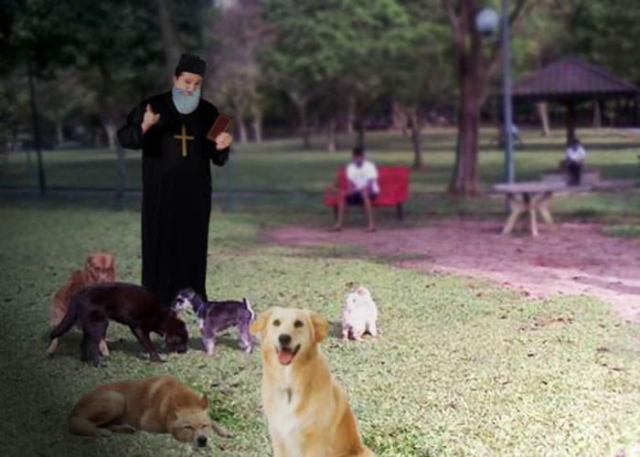 Patriarhul Daniel: Castrarea şi eutanasia nu rezolvă nimic! Maidanezii trebuie sfinţiţi de urgenţă