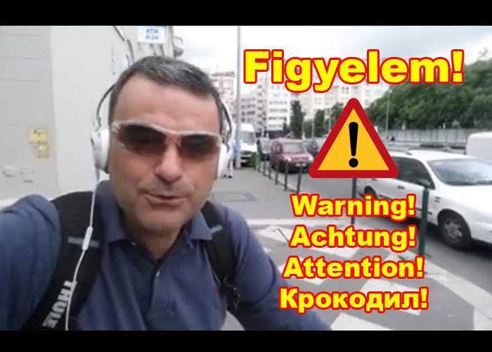 Magyar Testvérek, FIGYELEM! Mîndruță felügyeletlenül sétafikál Budapest utcáin!