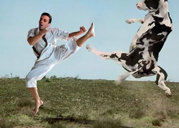 Mircea Badea continuă războiul împotriva consumatorilor de iarbă! A sărit să bată o vacă pe pășune