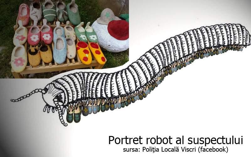 500 de perechi de papuci, furate din Viscri. Principalul suspect e un miriapod