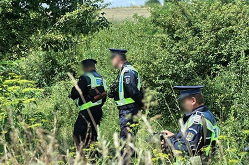 Polițiștii vor patrula azi fără câini. Simt şi singuri mirosul de mici de la 5 kilometri!