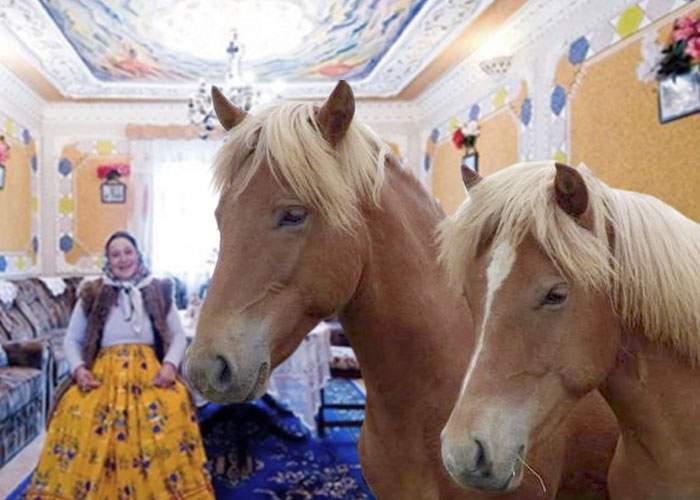"""Romii din Ştefăneşti, grav afectaţi de viscol: """"Ne mor caii în casă de frig!"""""""