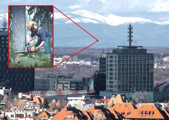 E atât de senin, că din Bucureşti vezi nu doar munţii, ci şi hoţii care taie lemne cu drujbele