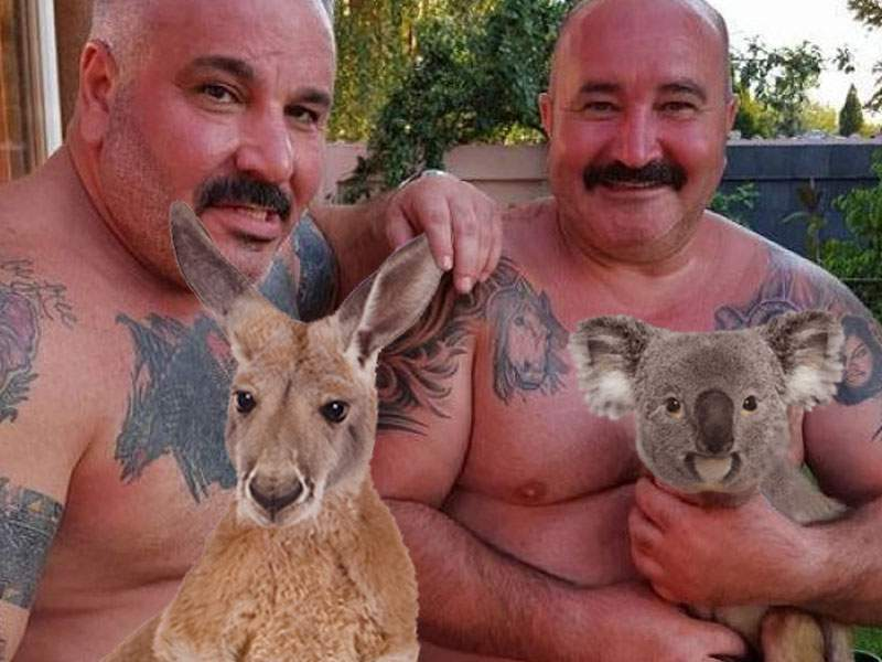 Suflet mare! Nuțu Cămătaru a salvat 3 koala, 2 canguri și 5 dingo din incendiile din Australia