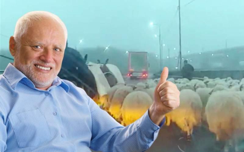 Oile de pe autostrada A2, miracol pentru şoferi! Au astupat toate gropile cu căcăreze