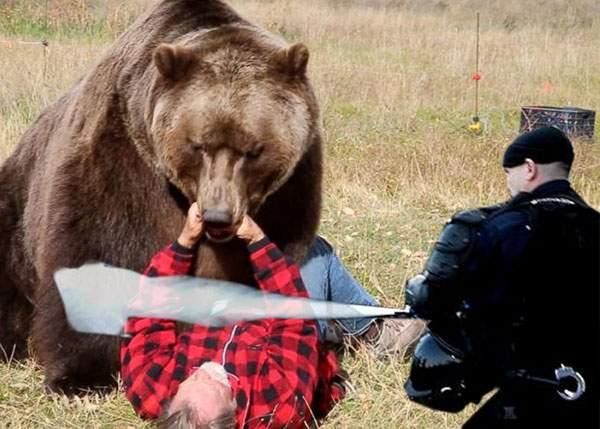 Ce ghinion! Un braşovean a fost muşcat şi gazat de o patrulă mixtă formată din jandarmi şi urşi