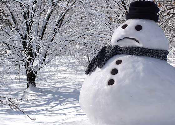 Mutilați pe viață! Veganii au lăsat fără nasuri mii de oameni de zăpadă