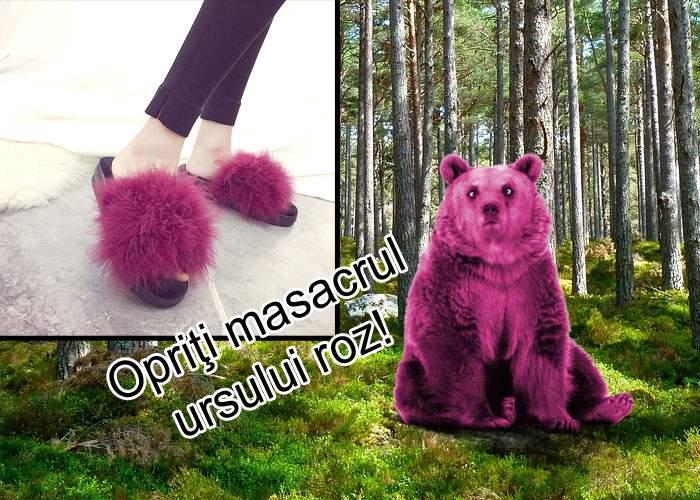 Dezastru ecologic! Industria papucilor cu blană a dus la dispariţia ursului roz din pădurile României