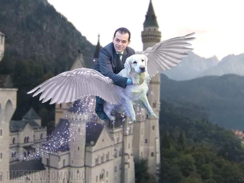 Fotogalerie! Ludovic Orban, 11 ipostaze inedite alături de câinele său