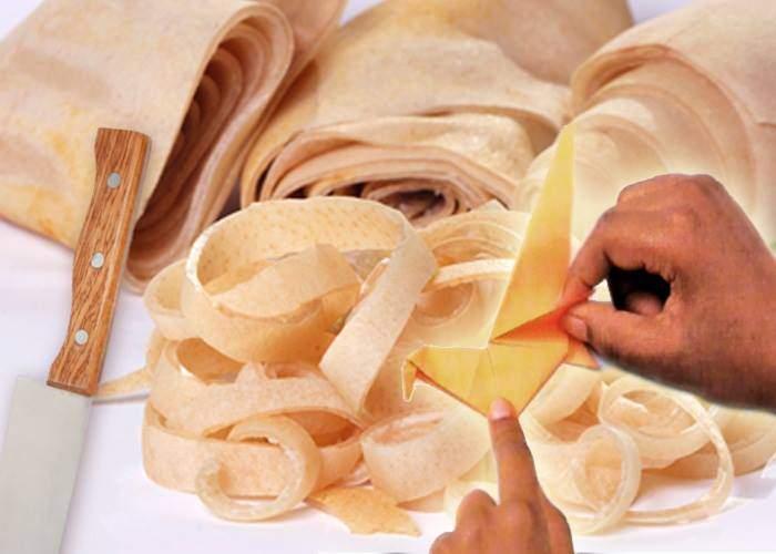 Globalizare! Un țăran s-a dus în Japonia ca să învețe să facă origami din șorici