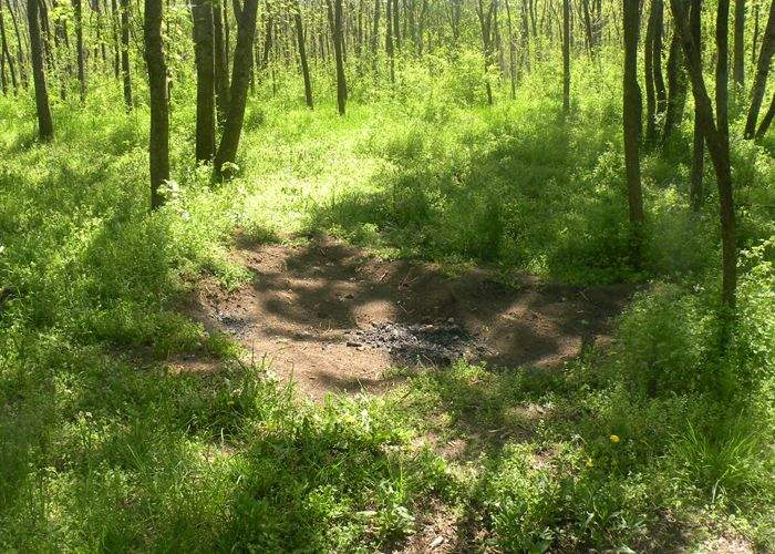 Bizar! A fost descoperită o zonă verde frecventată de turişti unde nu s-a aruncat nici un pet