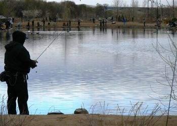 Pescuitul wireless (fără fir), ultima tehnologie în domeniul pescuitului
