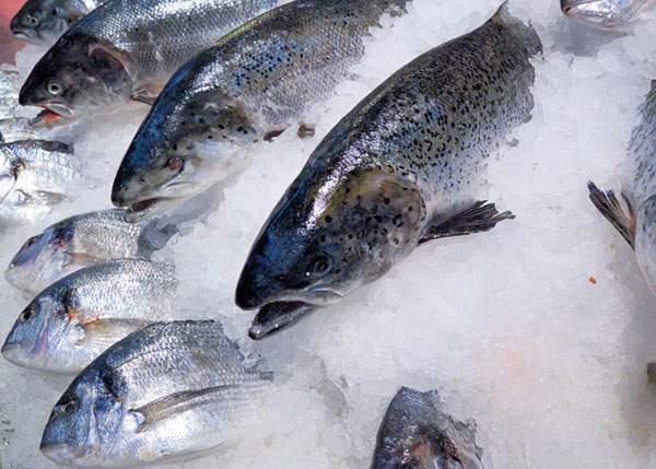 Alertă! Peștele congelat riscă să dispară din cauza încălzirii oceanelor