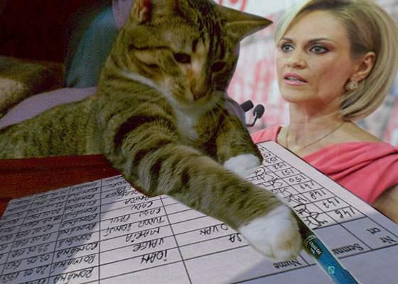 Pisica unui român e atât de odioasă că a semnat în locul lui pentru candidatura lui Firea