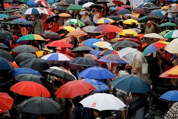 Atenție, bărbați! Ploaia scoate la iveală cel mai prost animal al planetei, femeia cu umbrelă