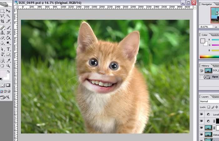 """Adobe Photoshop lansează plugin-ul """"Macovei"""", cu care poţi ataşa un zâmbet forţat la absolut orice"""