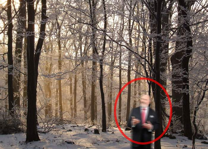 Adevăr sau legendă? Într-o pădure din Munţii Rarău se spune că locuieşte un politician cinstit